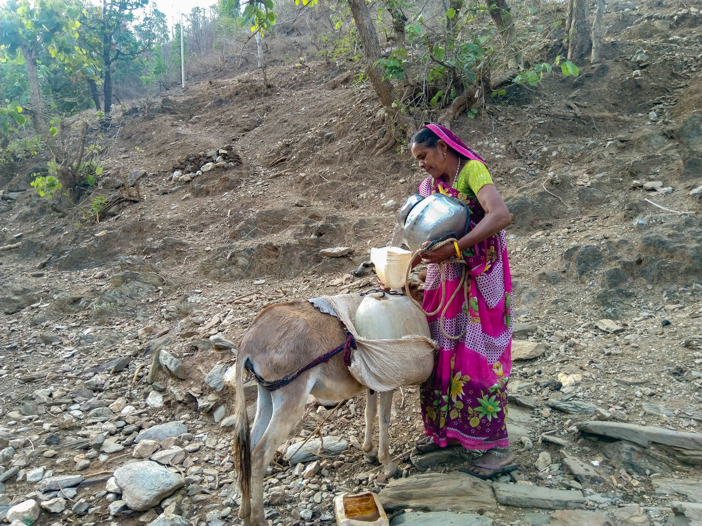 Dali Bada and her donkey. She is filling water into the cans