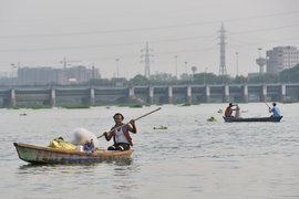 When Yamuna's 'dead fish will be fresher'
