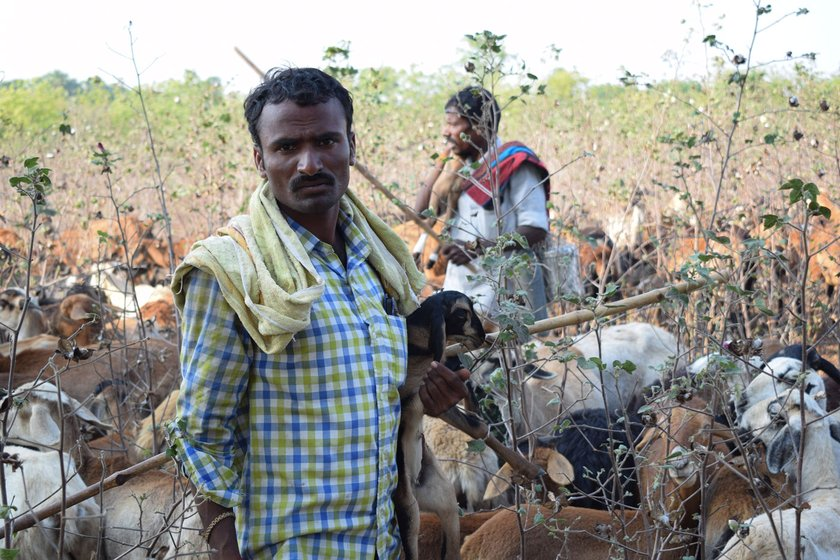 Left: Avula Mallesh and the other herders are not being allowed into the village to buy vegetables. Right: Tirupatiah preparing a meal with the rice, dal and vegetables given by the owner of the land where the flock was grazing