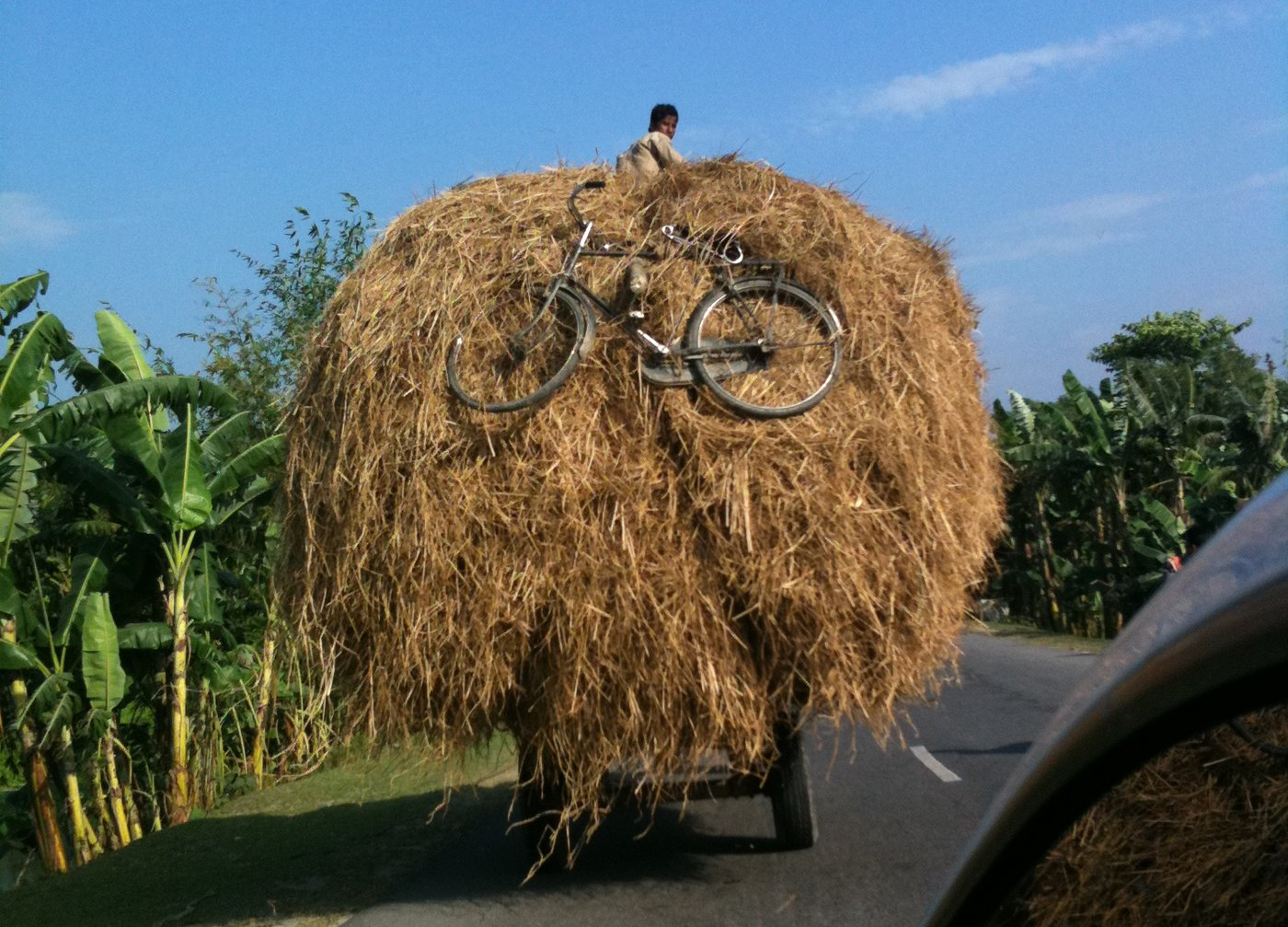 In journeys along rural Indian roads , you sometimes run into the delightfully bizarre