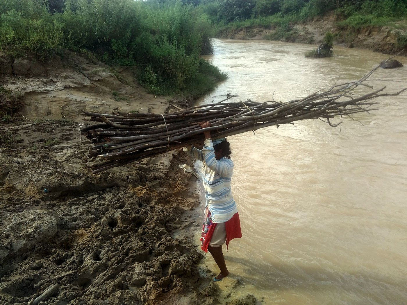 Allam Pavani, 16, carrying wood from the forests to the village. The wood stack on her head would weigh no less than 10 kgs and she has to walk three kilometers crossing streams and forests to reach her village.