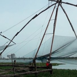 Casting a net in Fort Kochi
