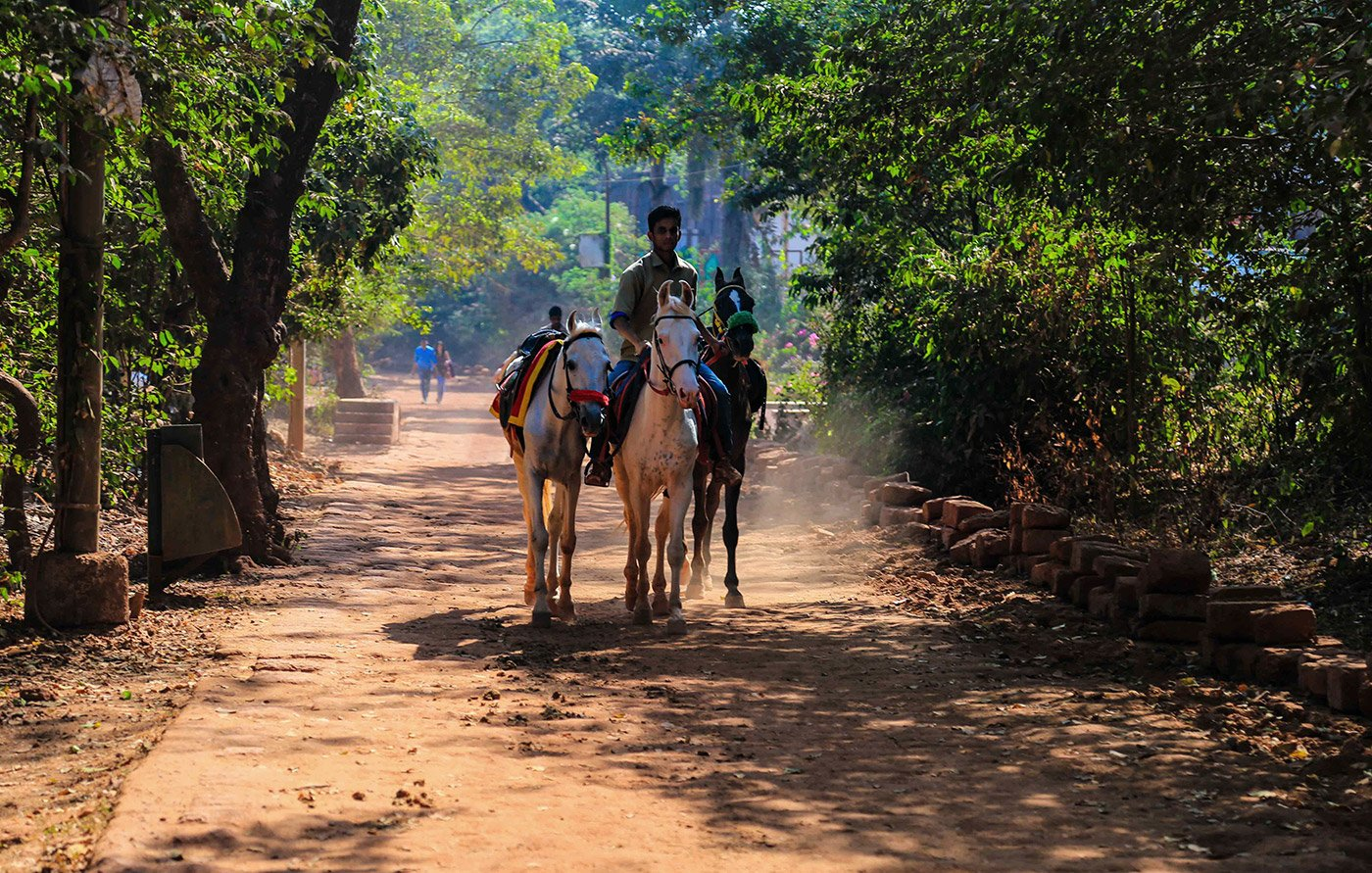 The keepers of the 460 horses of this hill station in Maharashtra's Raigad district walk or run upto 25 kilometres uphill every day through Matheran's dusty soil, with horse-borne tourists
