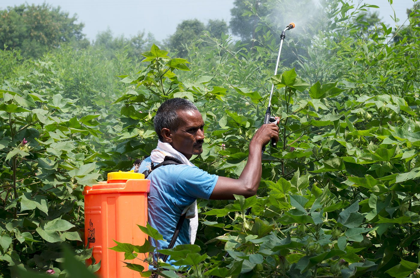 Narayan Kotrange, a tenant farmer of 10-acre in Manoli, demonstrates spraying in his fields from a battery-operated pump in village Manoli.