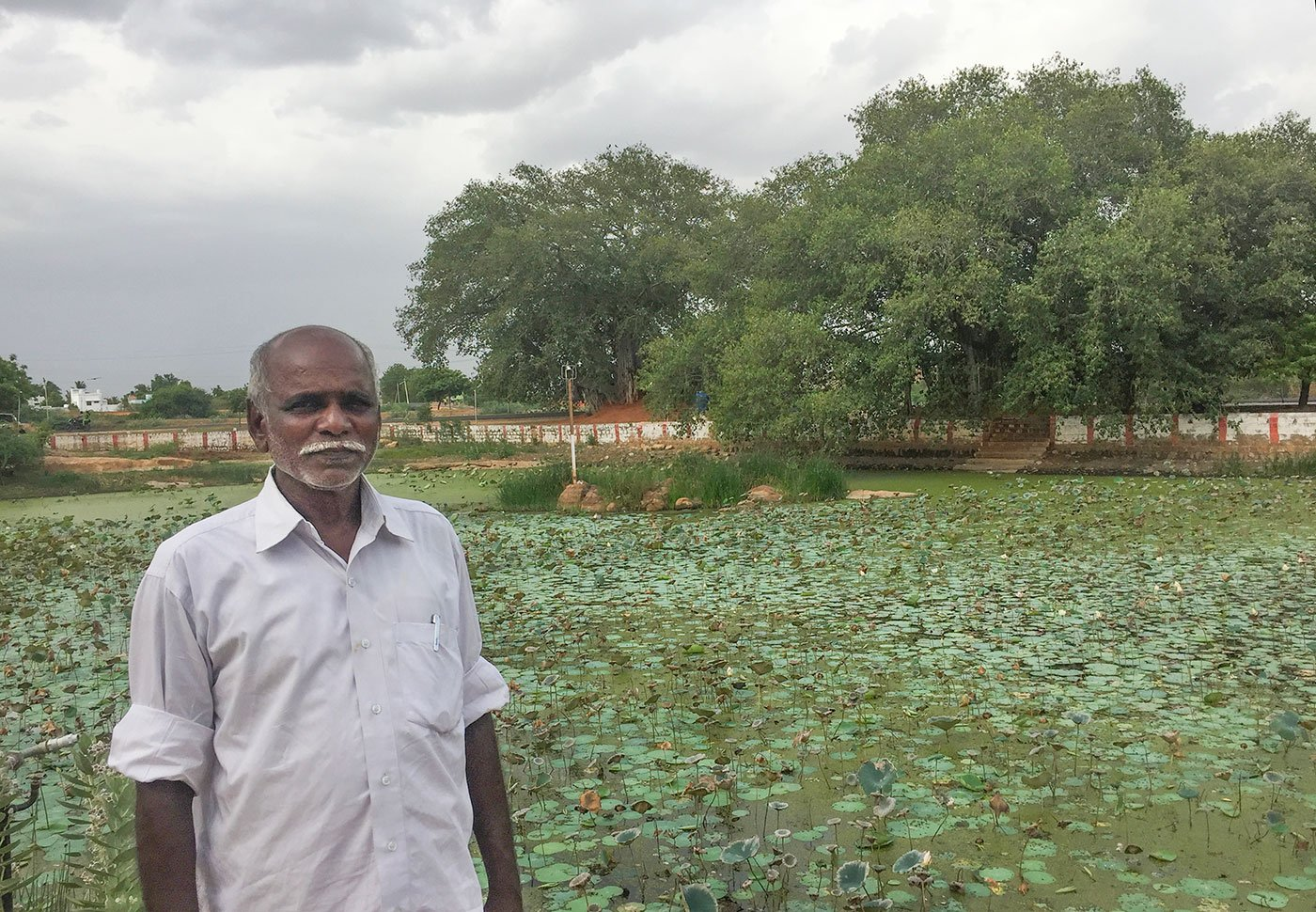 Pon Harichandran standing by a lake filled with lotuses