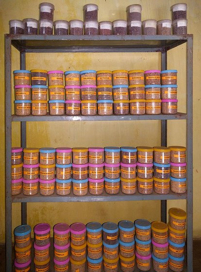 Seeds storage in Nuaguda seed bank. Seeds stored in earthen pots are treated with neem and custard apple leaves to keep pests and fungus away. Seeds stored in air-tight plastic jars are labelled. Currently in the seed bank, there are 94 paddy and 16 ragi varieties