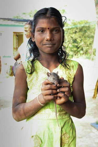 Baby rats are especially popular as pets among the Irula Adivasis in Bangalamedu hamlet – Dhaman, S. Amaladevi and Sakthivel (left to right) with their pets
