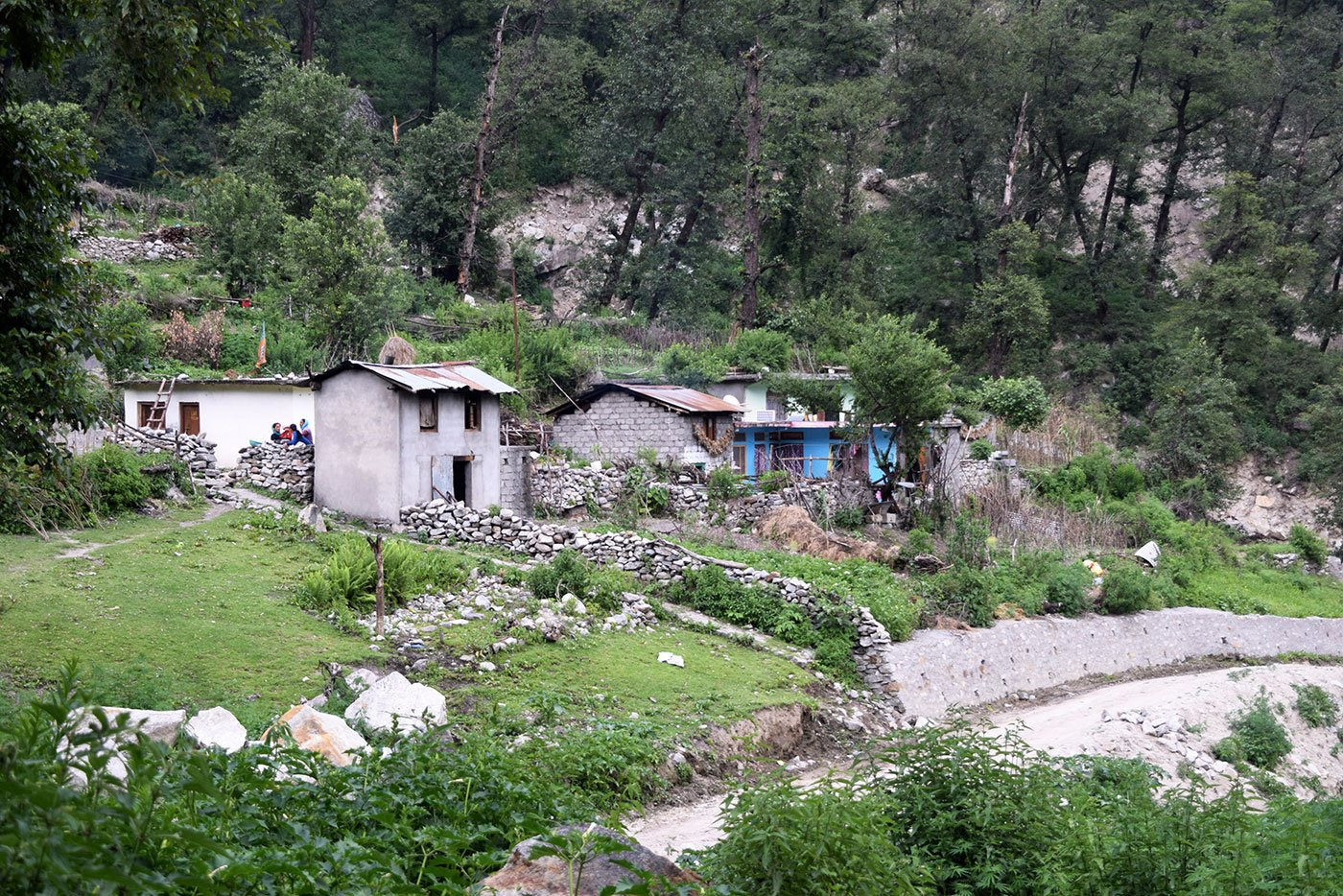 Keeda-jadi has transformed villages around Dharchula. New houses and shops have sprouted around