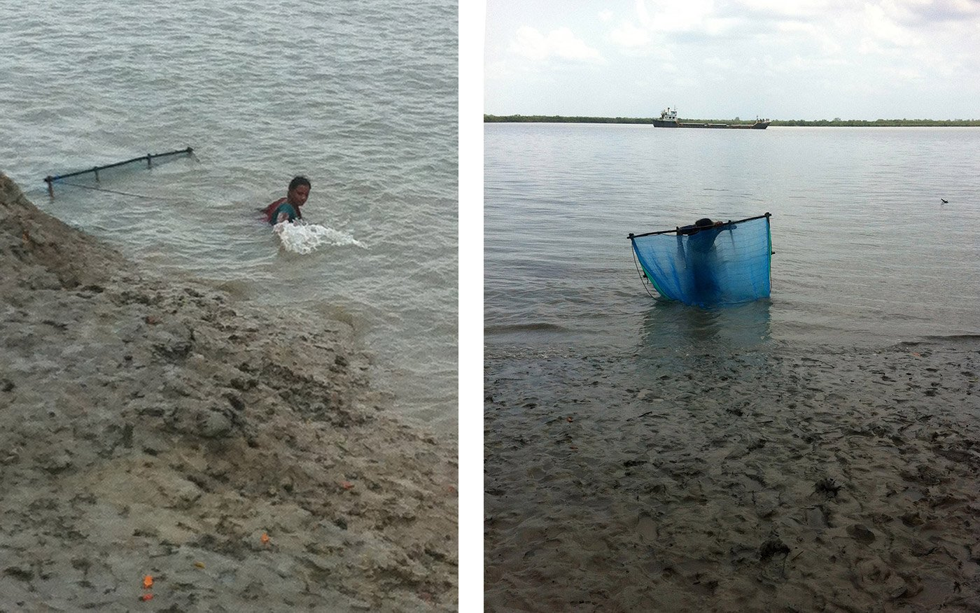 Left: The people who collect tiger prawn seedlings spend close to five hours in the water to get a sufficient catch. Right: A woman drags her net into the river at low tide, which is the best time to gather the seedlings