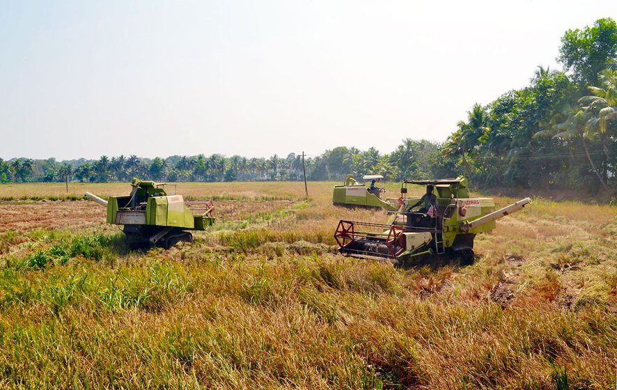 Large Hitachi tractors are used to harvest the fields. These tractors are used on levelled  ground. However many parts of the field are uneven and marshy which is why and where MNREGA are commissioned  to the harvesting work.