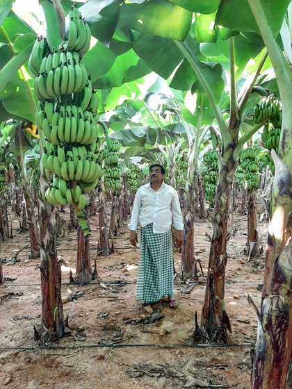 Banana cultivators C. Linga Reddy (left) and T. Adinarayana are steeped in debt due to the drastic drop in banana prices during the lockdown