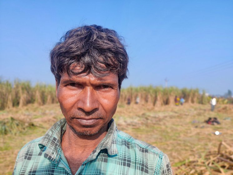 Farmer Rajmahal Mandal from Bihar's Barhuwa village cuts sugarcane in Gagsina village, Haryana, to earn more and take care of his family