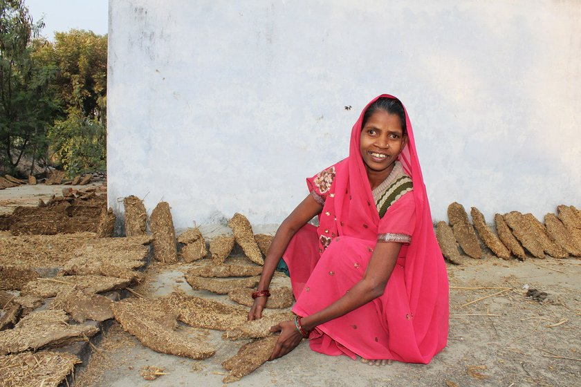 Usha makes cow dung cakes at her brother Lalji Ram's home in Dandopur