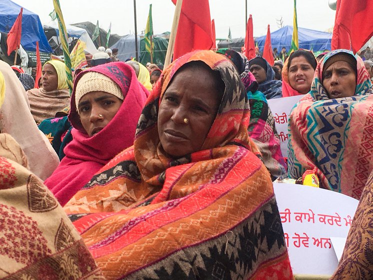Pamanjeet Kaur, 40, a Dalit labourer from Singhewala village in Malout tehsil of Muktsar district, Punjab, was among the 300 women members of Punjab Khet Mazdoor Union who reached on the outskirts of the national capital on January 7. They all returned to Punjab on January 10. Right: Paramjeet's hands