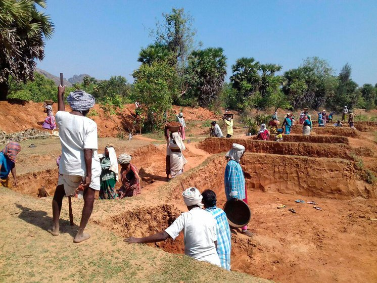Labourers in MGNREGA work sites taking part in land development work on the outskirts of Munagapaka village