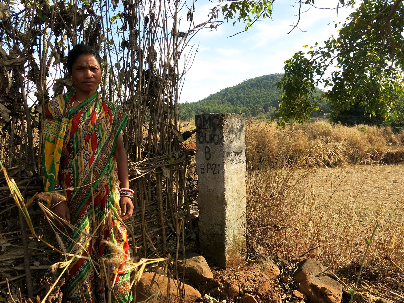 In several farms of Adivasi villagers, Odisha Mining Corporation pillars mark the lease area of its proposed Gandhamardan mine