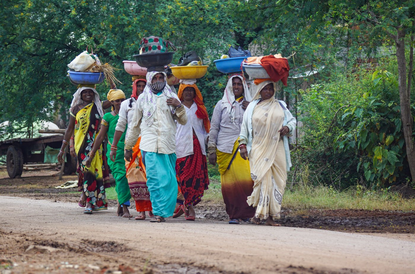 Labourers from Baliyara village, not far from Dhamtari town, on their way to paddy fields to plant saplings