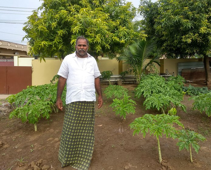 Nagamalleswara Rao's front yard, where he grows 12 to 15 crops including ladies finger, mango, chikoo and ivy gourd. His love for farming has led him to grow more crops in his front yard.