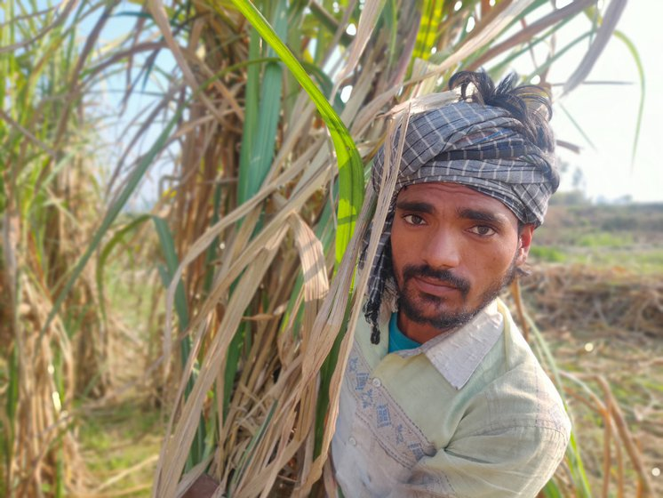 After months of backbreaking work cutting sugarcane, Kamaljit Paswan's body aches for days when he returns home to Bihar
