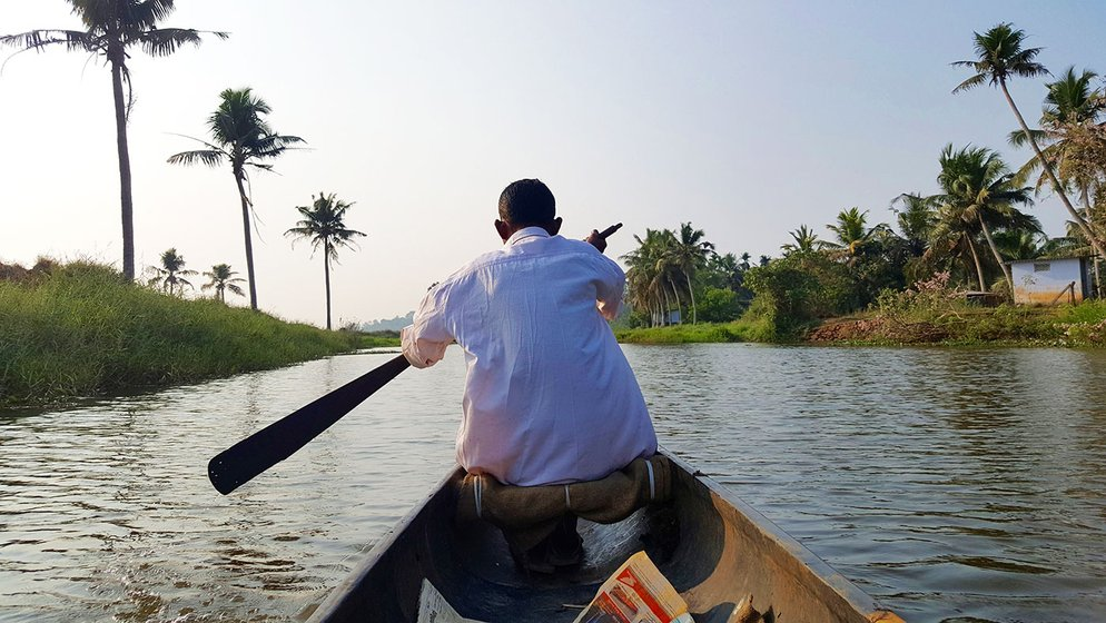 Babu Ulahannan moves around the 250 acres with the help of a wooden boat, called vallam in Malayalam. A stream runs that through this large field facilitates the travel