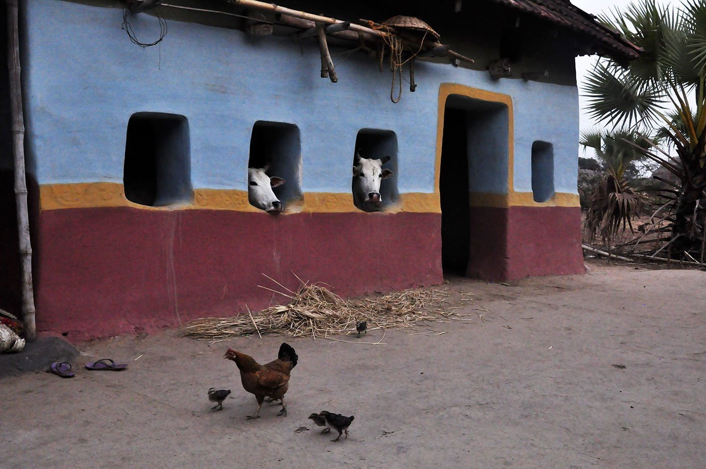 05-Nalhati-qc-112-MM-Bamli's House.jpg