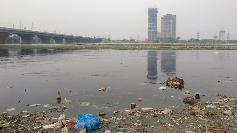 Last year, thousands of fish were found dead at the Kalindi Kunj Ghat on the southern stretch of the Yamuna in Delhi