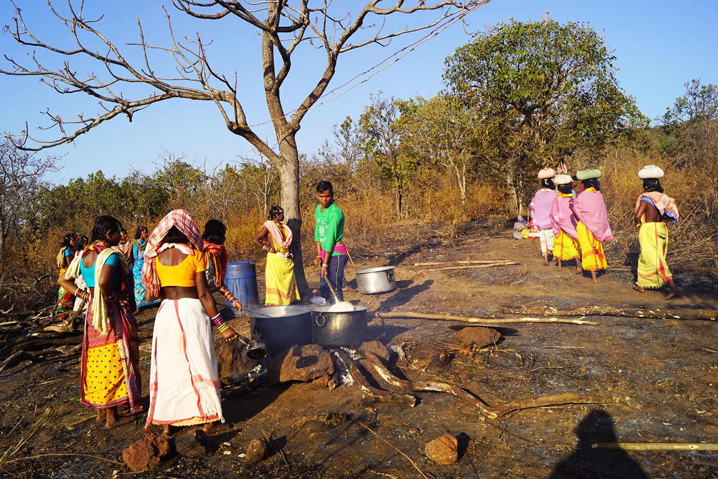 Tribal women cooking in an open field