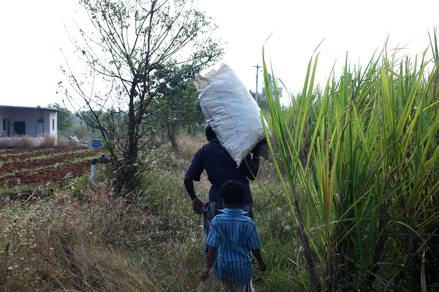 Iniya walks behind, as her mother carries home a sack of produce