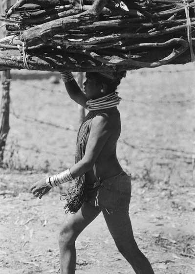 adivasi woman carrying headload