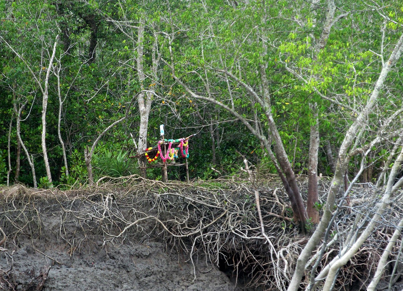 12-Bonbibi-shack,-Sundarban(Crop)-SB-Ma Bonbibi, Mother to Humans and Tigers.jpg