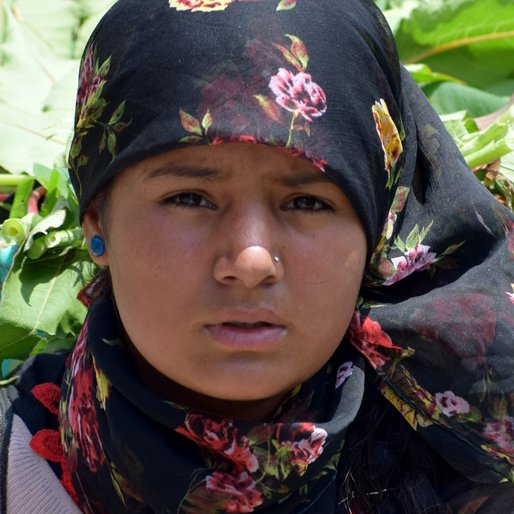 Kausalya is a Farm worker from Solang, Naggar, Kullu, Himachal Pradesh