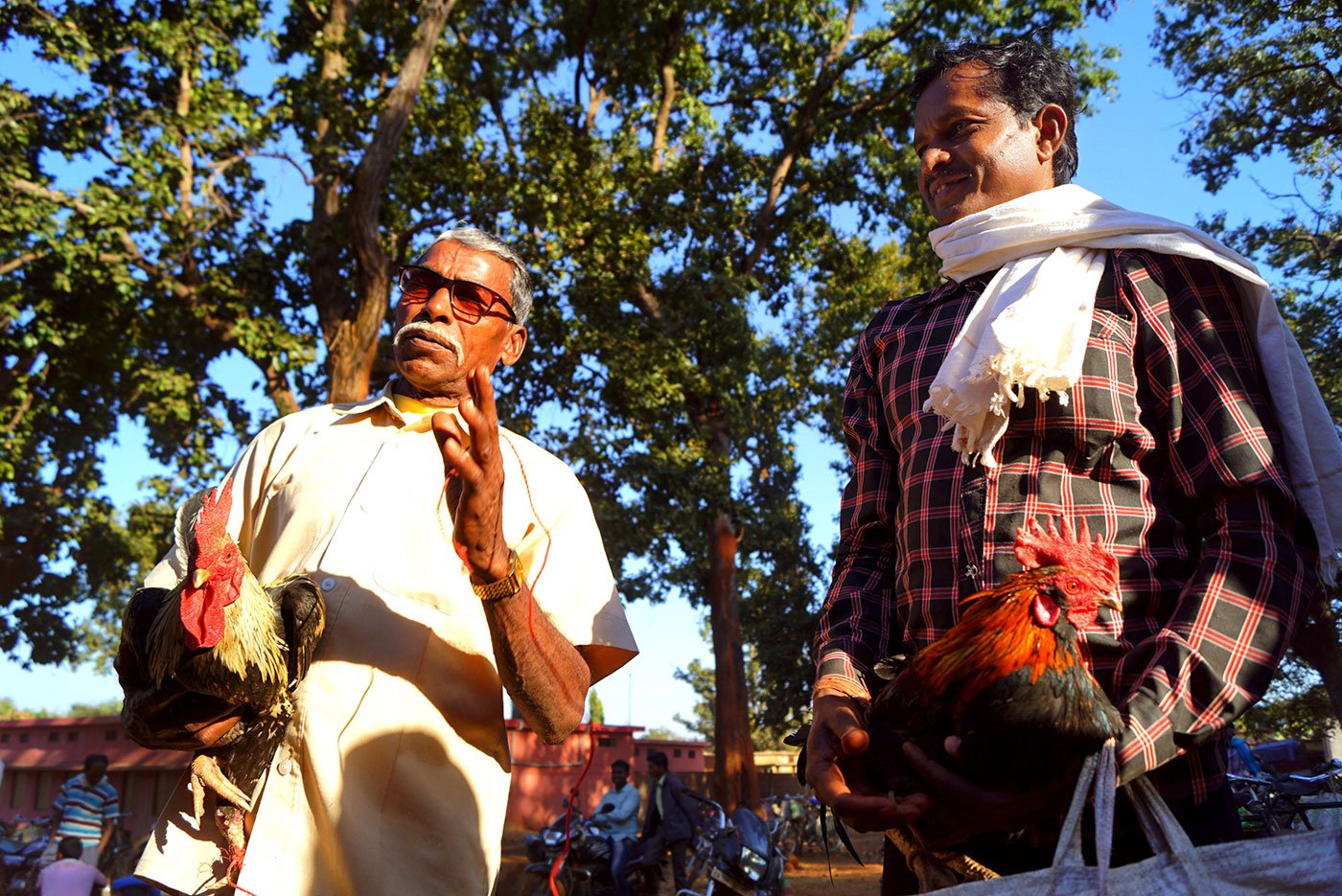 Ramchand Samrath (left, in white) from Amabeda village and Baiju, from Manku village wait for their roosters be paired before the fight