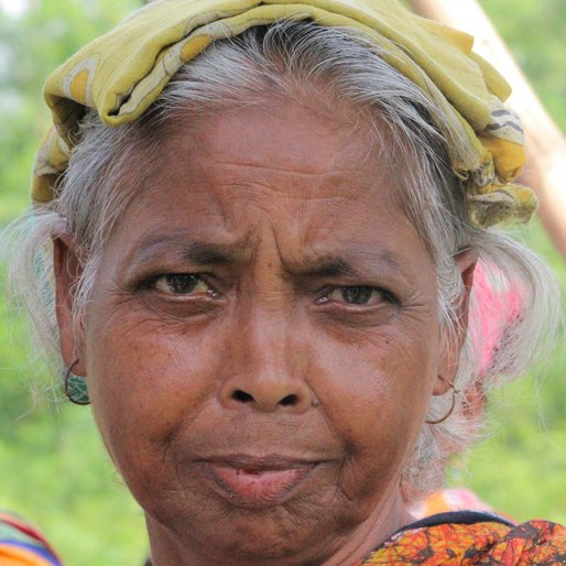 SALMA KHATUN is a Tea garden worker from Subarnapur, Mal, Jalpaiguri, West Bengal