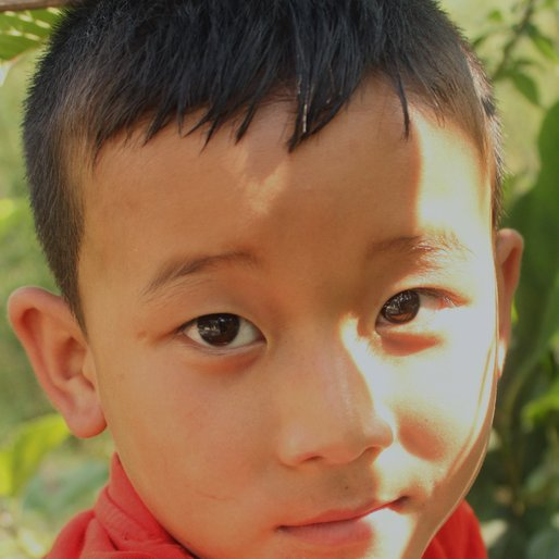 LEEZONG LEPCHA is a Student from Icha Forest, Kalimpong II, Kalimpong, West Bengal