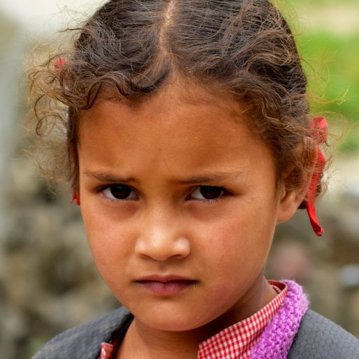 Anchal is a Student from Nashalla, Naggar, Kullu, Himachal Pradesh