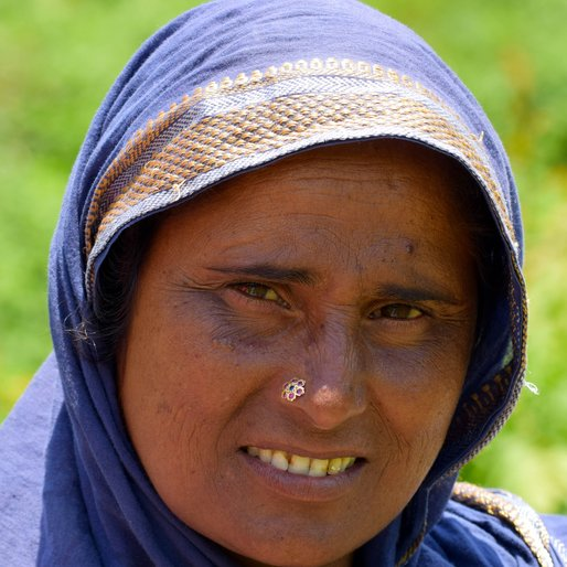 SIMA DEVI is a Farmer from Solang, Nagar, Kullu, Himachal Pradesh