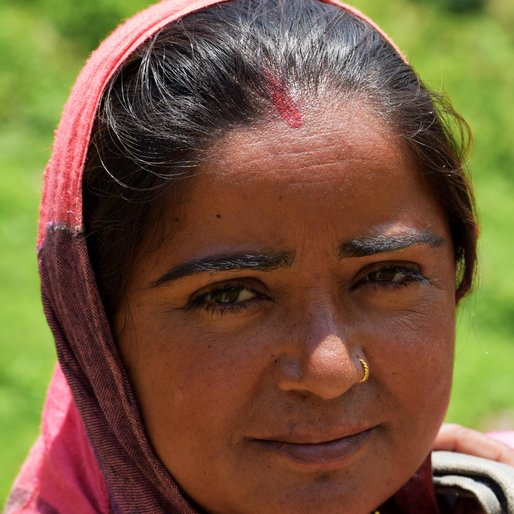 KAMNI DEVI is a Farmer from Solang, Nagar, Kullu, Himachal Pradesh