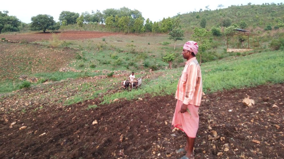 Dashrath's 2.5 acres of land yields just enough produce to feed his family