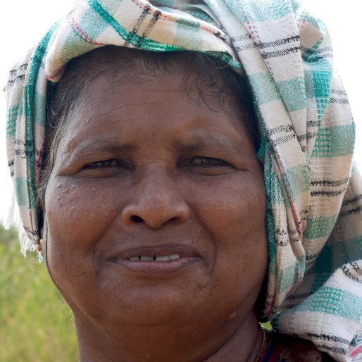 Maria Magdalena Xavier is a Farmer from Quelossim , Mormugao, South Goa, Goa