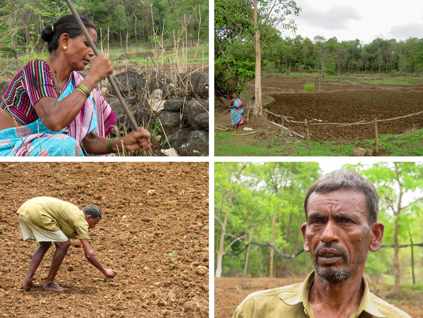 Top row: 'For a long time now, the rainfall is not according to the nakshatras,' says Indu Agiwale. Botttom row: Kisan Hilam blames hybrid seeds for the decreasing soil fertility