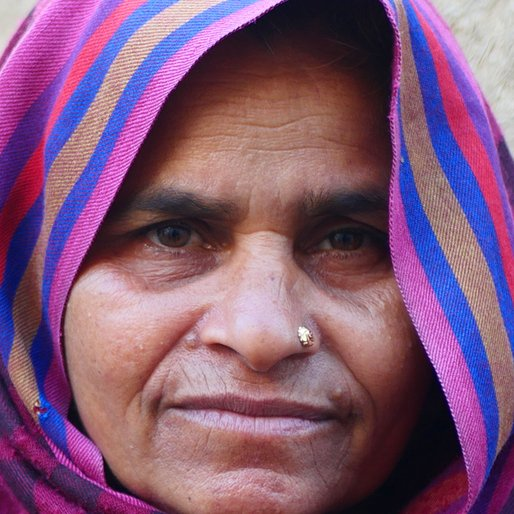 Bhateri is a Daily wage labourer from Teontha, Pundri, Kaithal, Haryana