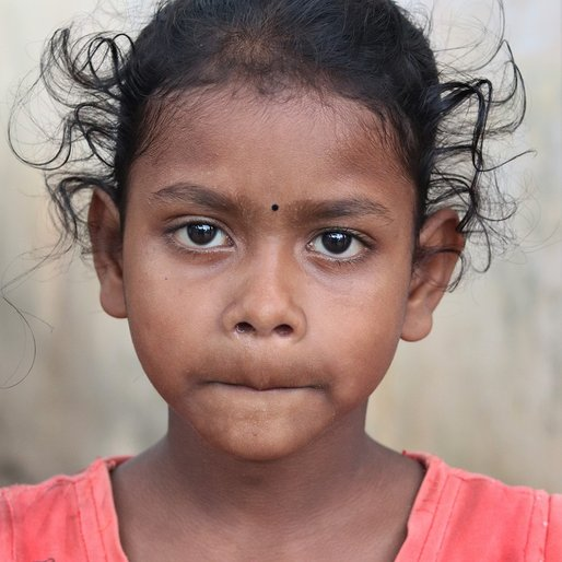 Chinki Samal is a Student (Class 3) from Iping, Krushnaprasad, Puri, Odisha