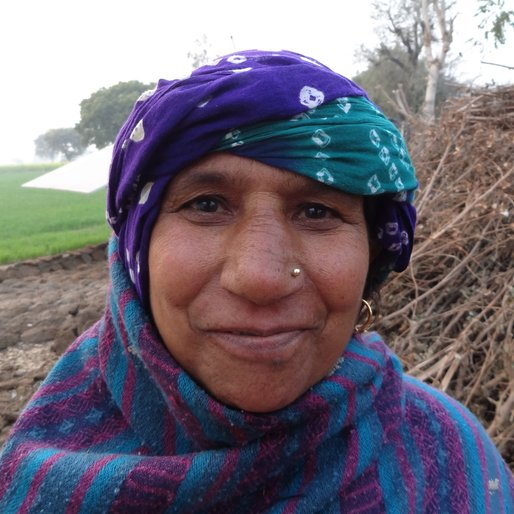 Rajbala is a Farmer and homemaker from Dhania, Sahlawas, Jhajjar, Haryana