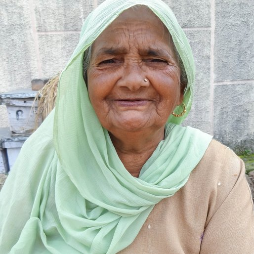 Krishna Devi is a Daily wage labourer and homemaker from Tatki, Babain, Kurukshetra, Haryana