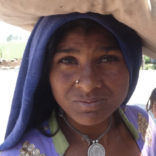 Sunita is a Traditional nomadic healer from Palra, Rai, Sonipat, Haryana