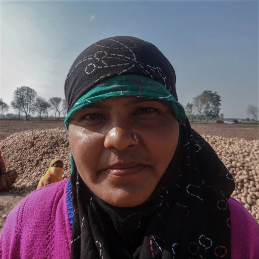 Laddi Devi is a Daily wage labourer and homemaker from Dhakala, Shahbad, Kurukshetra, Haryana