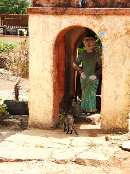 Janabai shrine outside Anjanabai's home visited by a devotee cat