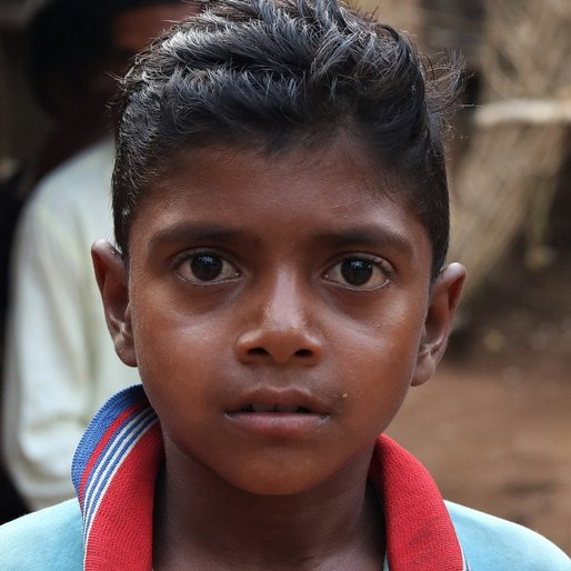 Dipu Singh is a Student (Class 6) from Rajabasa, Bisoi, Mayurbhanj, Odisha