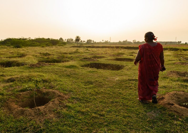 'Where are the jobs for women?' asked S. Sumathi; here she is standing at water absorption pits dug on a dried lake bed, and a few tree saplings planted as part of MGNREGA water conservation projects in Cherukkanur panchayat