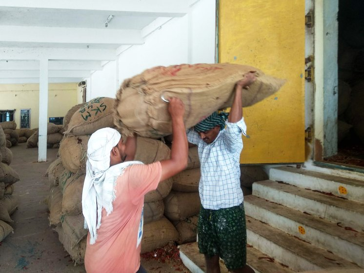 Workers helping each other to carry sack of mirchi